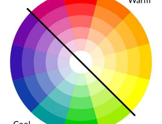 colors divided into warm and cool